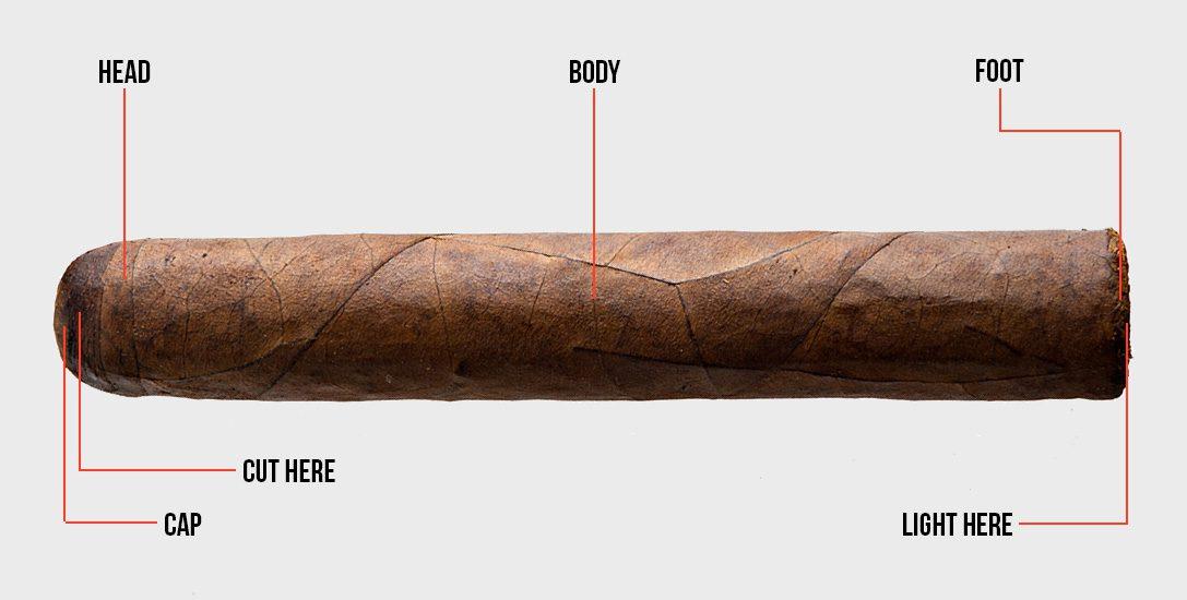 anatomy-of-a-cigar-01