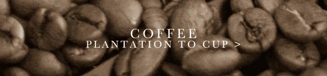 COFFEE_PTC_620